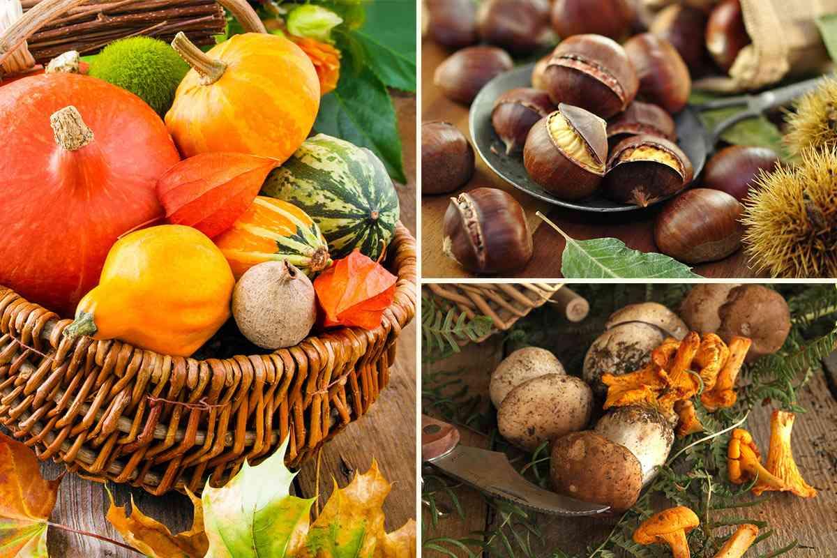 So schmeckt der Herbst
