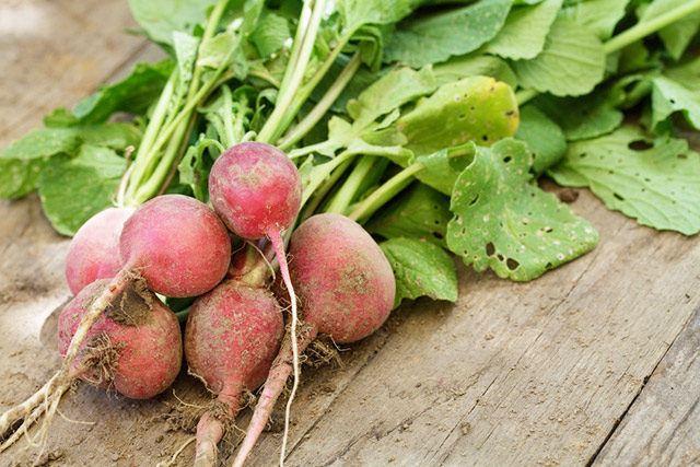 Ebenfalls zu den ersten Gemüsesorten im Garten gehören die Radieschen.