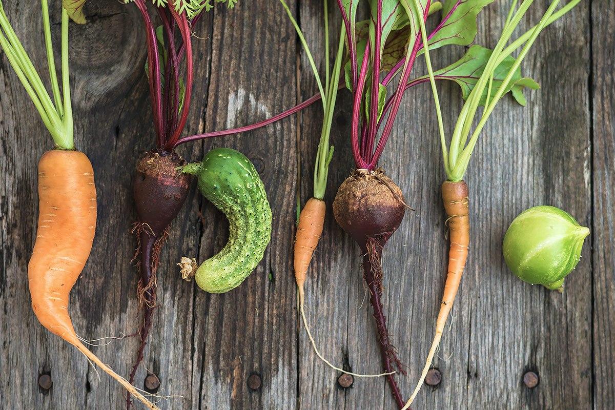 Krummes Gemüse ist viel zu schade zum Wegwerfen