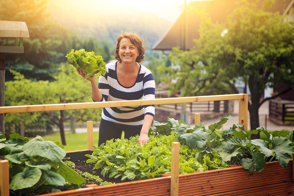 Die richtige Ernährung trägt enorm zum ausgeglichenen Säure-Basen-Haushalt bei und verhindert Übersäuerung.