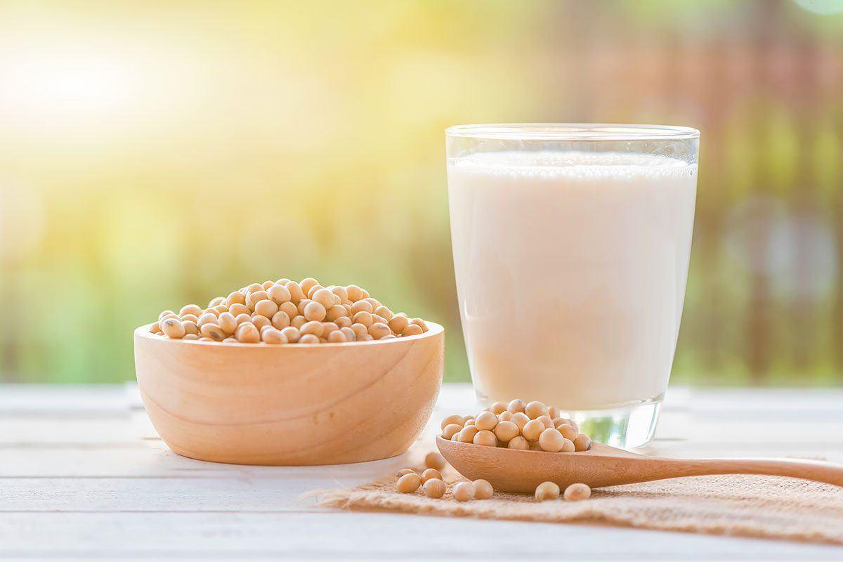 Sojamilch und Hafermilch - gesunde Milchalternativen