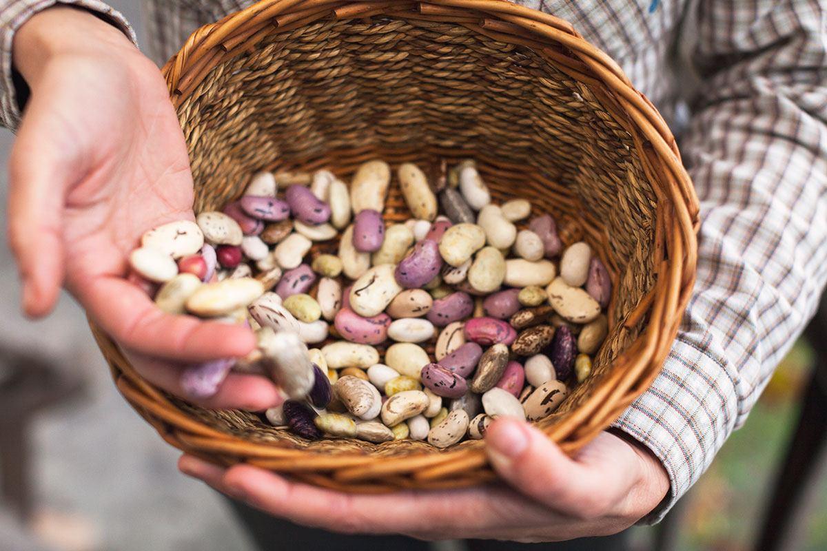 Hülsenfrüchte und Vollkornprodukte enthalten besonders viele Ballaststoffe