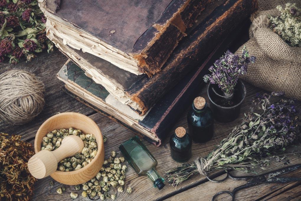 Hildegard-Heilkunde: Kräuter und Gewürze als Medizin
