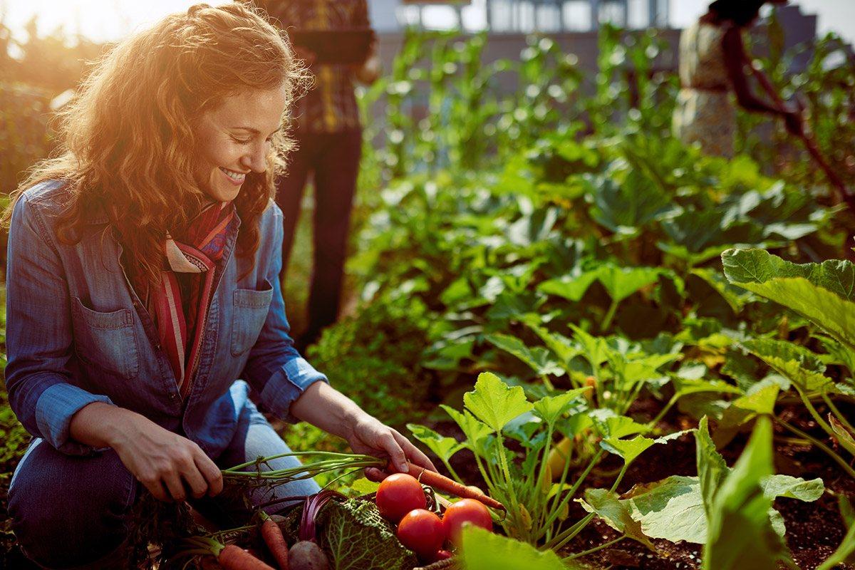 Basische Lebensmittel helfen gegen die Übersäuerung.