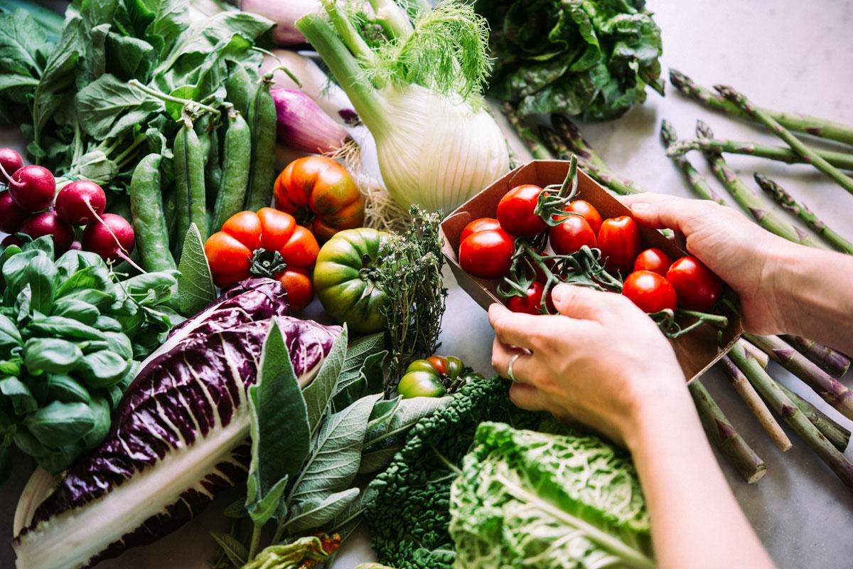 Die optimale Versrogung mit Mikronährstoffen ist zentral für viele Körperfunktionen.